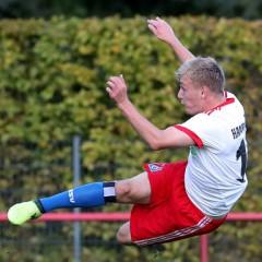 Fabian Gmeiner wechselt zum HSV